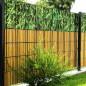 Motiv Bambus und Bambushecke von M-tec technology